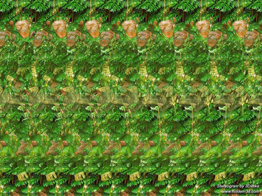 magic eye monkeys